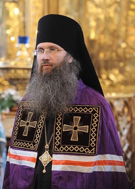 Епископ Урюпинский и Новоаннинский Елисей